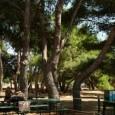 Casa per ferie Campi Salentina (LE)  La Casa per ferie Campi Salentina rif. MA005 è ubicata nel paese di Campi Salentini in provincia di Lecce, a 10 Km dal […]