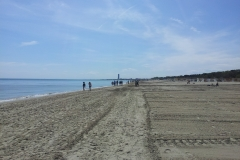 spiaggia pinarella di cervia